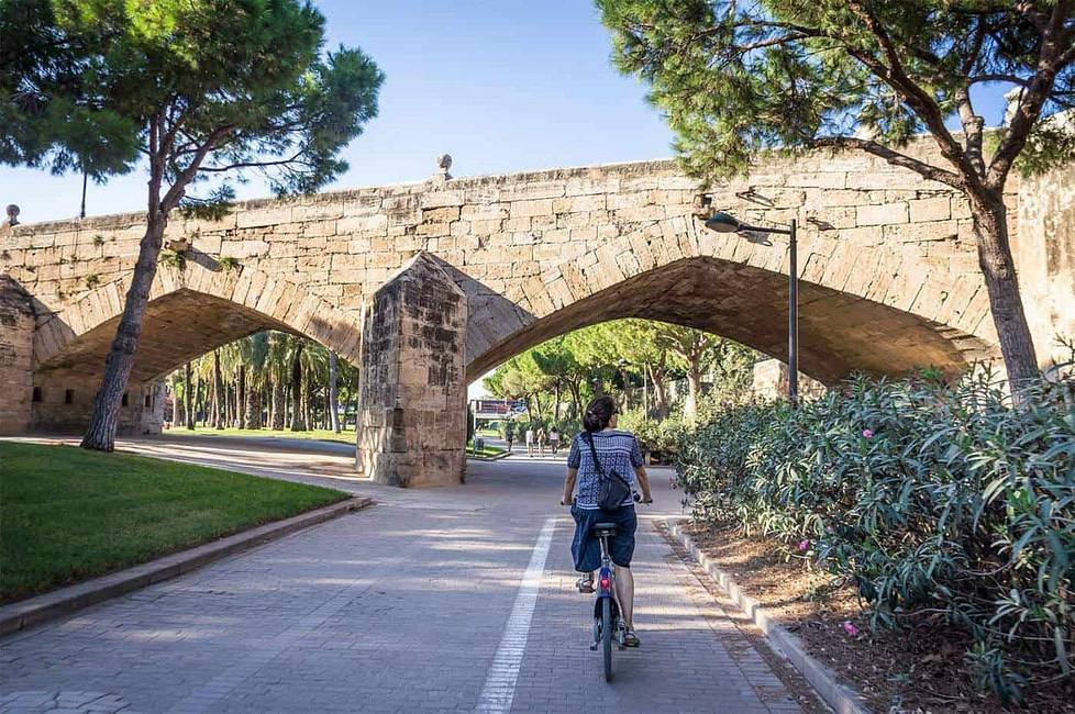 A cyclist on Les Jardins du Túria in Valencia, Spain