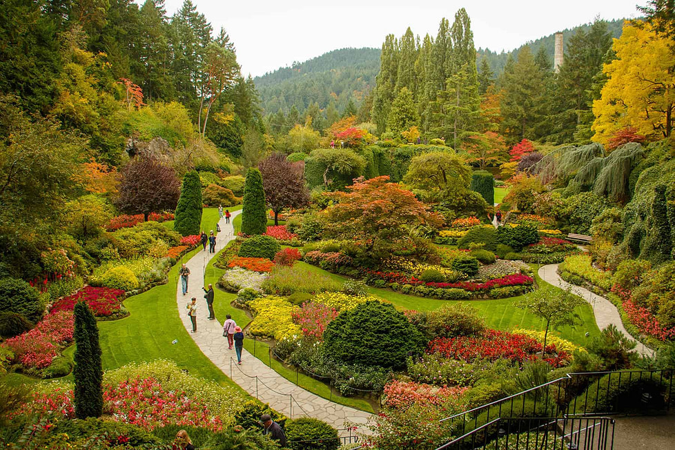Living in Victoria BC - the Butchart Gardens