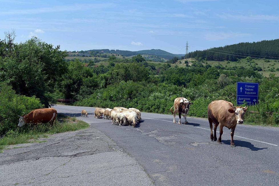 Driving in rural Bulgaria