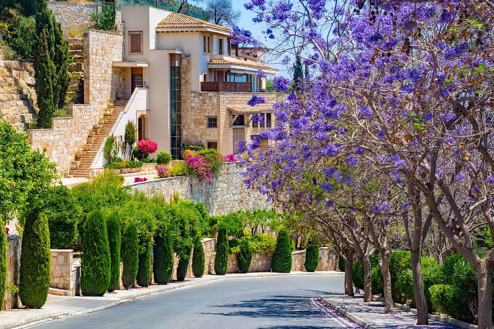 A grand Mediterranian villa in a street lined with blossoming trees, Cyprus