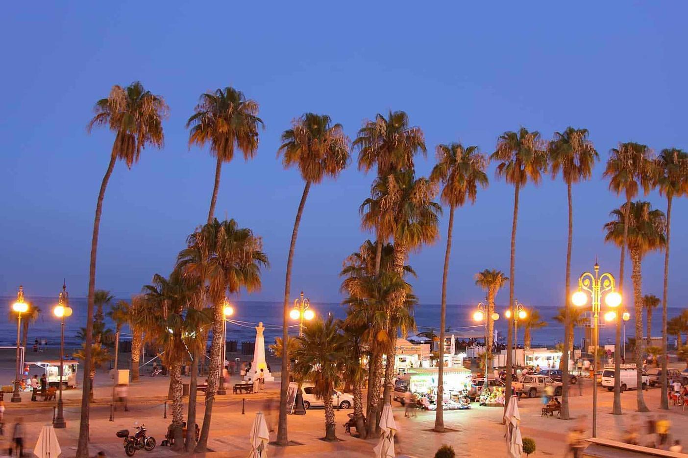 Palm Tree Beach of Larnaca