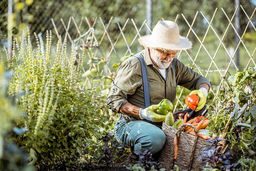 Healthiest climate is also good for gardening