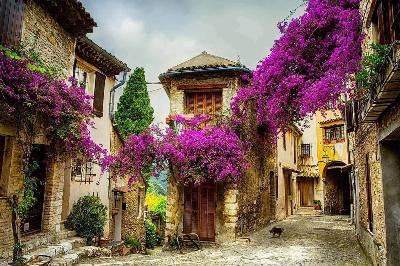 Best Places To Live France